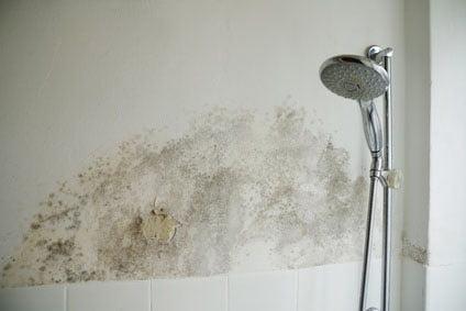 Wasserschaden - Elementarschaden in Haus und Wohnung